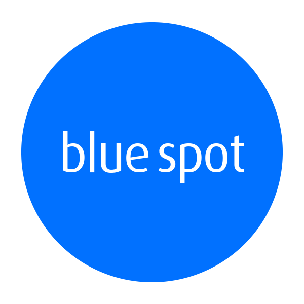 Blue Spot Fire and Security Logo